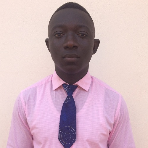 %Online Software Solutions In Ghana%BK Strategic Group